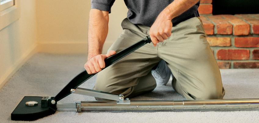 Bear Carpet - Carpet Cleaning Pros