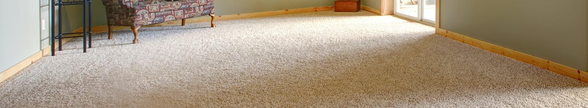 Carpet Cleaning Albuquerque Nm Bear Carpet Inc Der